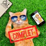 Information place disponible pension pour chats